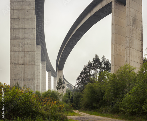 Keuken foto achterwand Bomen Beautiful white viaduct with trees below