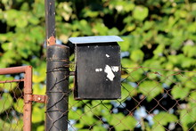 Heavily Used Old Small Black Metal Mailbox With Dilapidated And Cracked Paint Mounted On Partially Rusted Pole With Wire Fence Attached On Right And Metal Doors On Left With Light Green Leaves In Back