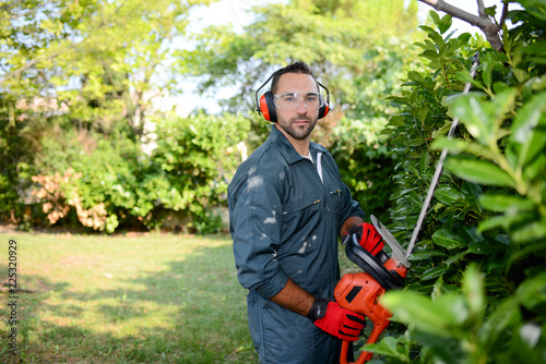 Obraz handsome young man gardener trimming hedgerow in a garden park outdoor - fototapety do salonu