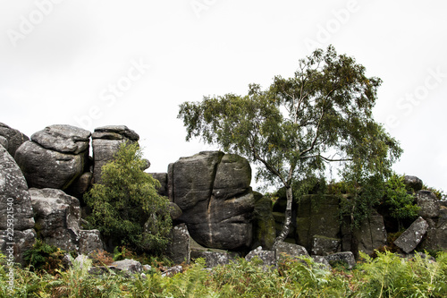 Foto op Plexiglas Grijs Gritstone rocks in the fields