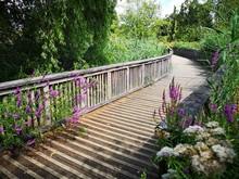 Winding Bridge Path