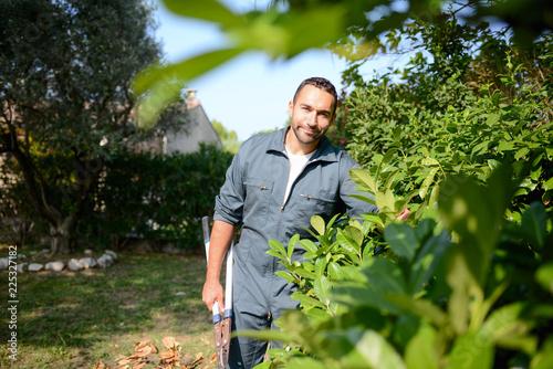 Fotografie, Tablou handsome young man gardener trimming hedgerow in a garden park outdoor