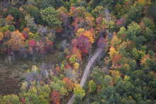 Aerial View Of Curving Road And Trees In Autumn Color In Northern Minnesota