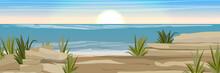 Stony Coast Of The Sea Or Ocea...