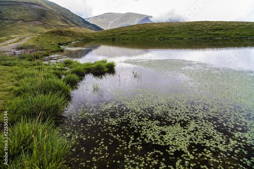 mountain lake with vegetation in Romania