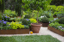 Horizontal Image Of A Garden With Many Plants Very Neat And Tidy