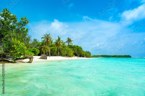 Poster Vert corail Beautiful sandy beach in uninhabited island