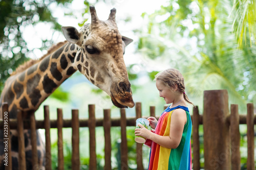 Kids feed giraffe at zoo. Children at safari park.