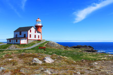View Of Ferryland Downs And Th...