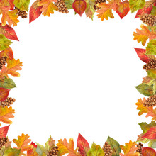 Watercolor Frame Of Autumn Leaves For Design And Decor