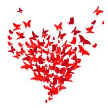 Red Heart, Butterflies, Valent...