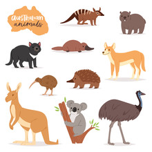 Australian Animals Vector Anim...