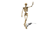 Funny Skeleton Waving And Smiling, Walking Human Skeleton Isolated On White Background, 3D Rendering