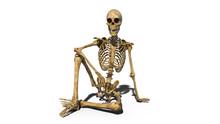 Funny Skeleton Sitting On Grou...