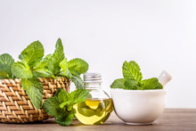 Aroma Essential Oil From A Peppermint In The Bottle On The Table With Fresh Green Mint Leaf