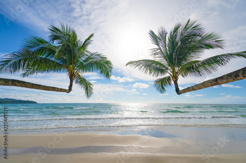 Beautiful tropical beach and sea with coconut palm tree under blue sky