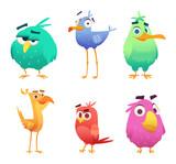 Fototapeta Fototapety na ścianę do pokoju dziecięcego - Cartoon funny birds. Faces of cute animals colored baby eagles happy birds. Vector clipart characters isolated. Animal bird happy, character funny different illustration