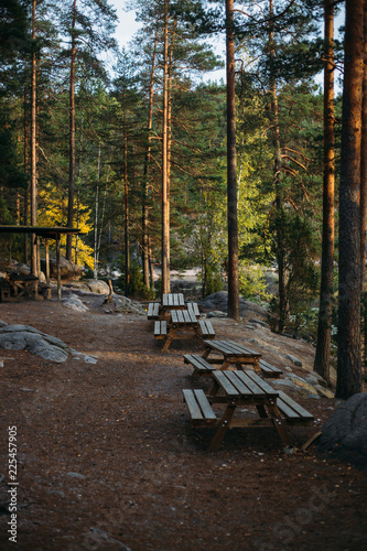 Poster Chocoladebruin Autumn landscape in National park Nuuksio (Finland, Helsinki)