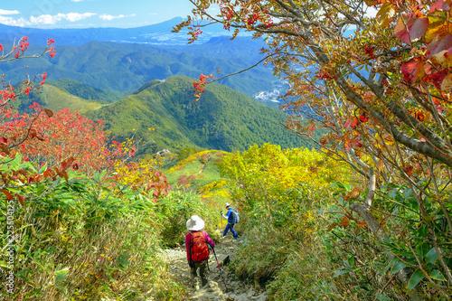 Foto op Canvas Pistache 紅葉の谷川岳下山道