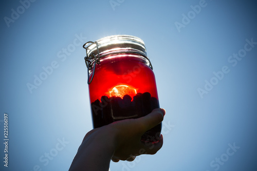 Vászonkép Sloe berries and gin combined in a glass jar prior to being put down to infuse a