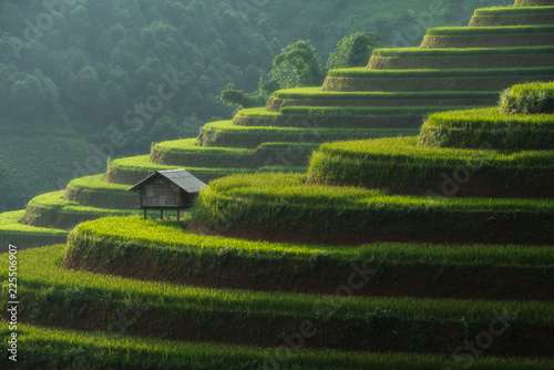 Foto auf AluDibond Reisfelder landscape rice fields on terraced of Mu Cang Chai, YenBai, Vietnam