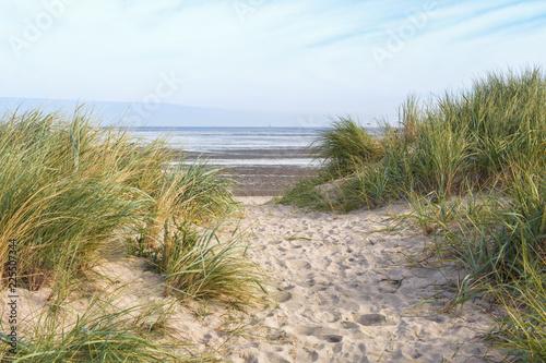 Fotografía Dunes at the beach of Schillig, Lower Saxony, Germany