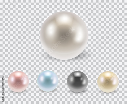 Vector set of beautiful colorful shiny pearls with shadows isolated on transpare Wallpaper Mural