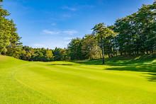 ゴルフコース フェアウェイ
