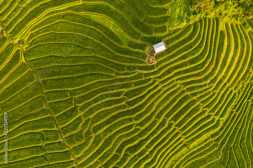 Foto auf Leinwand Reisfelder Small house and rice terraces field at pabongpaing village rice terraces Mae-Jam Chiang mai, Thailand