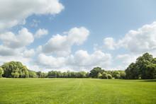 Wide Green Meadow