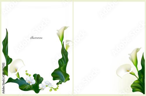 Fotografie, Obraz  Flowers