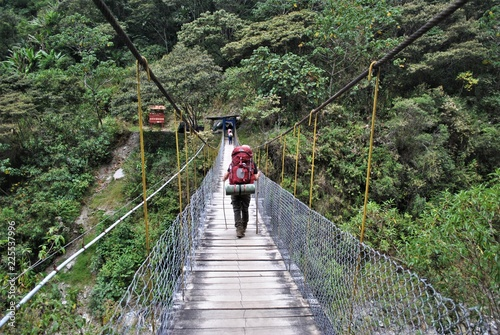 Fotobehang Zuid-Amerika land bridge in south america jungle