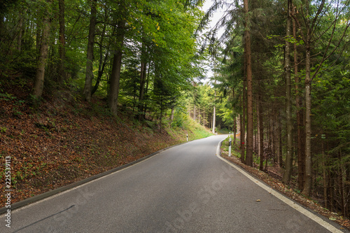 Zdjęcie XXL Droga w lesie jesienią