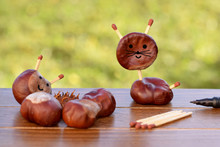 Animal Figurine Made Of Chestnuts
