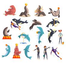 Oceanarium Or Dolphinarium Set...