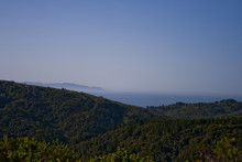 Muir Woods National Park, Views Of The Hills And The Pacific Ocean