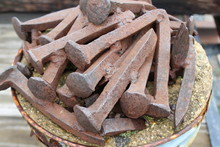 Large Rusty Railroad Nails