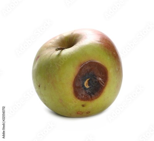 Valokuva  Rotten red apple isolated on white background, clipping path