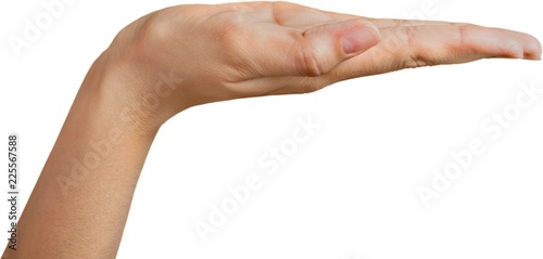 Empty Open Hand