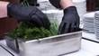 organizing several herbs