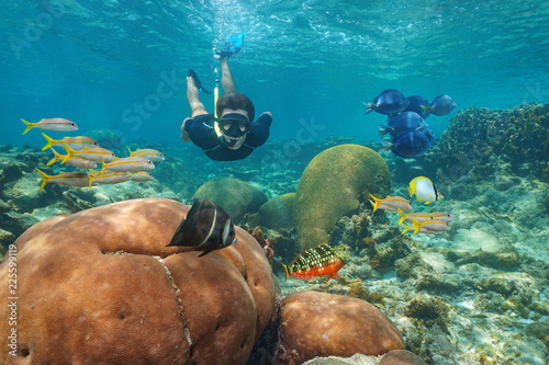 Man snorkeling underwater in a coral reef with colorful tropical fishes, Caribbean sea