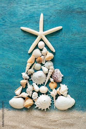 Christmas tree made from sea shells and starfish on wooden blue background, top Canvas Print
