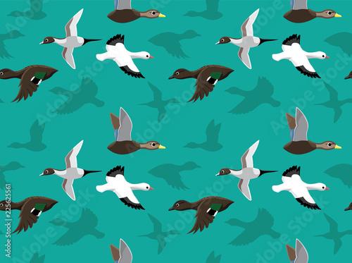 Valokuva  Ducks Wallpaper 5