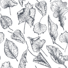 Vector Seamless Pattern With H...
