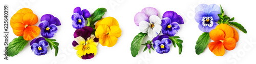Tuinposter Pansies Pansy viola tricolor flowers set