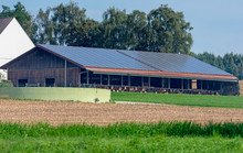 Cowshed With Solar Cells On Th...