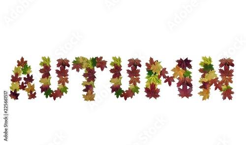 Photo Слово осень из кленовых листьев на белом фоне