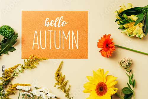 Fotografie, Tablou flat lay with various wildflowers around orange card with hello autumn letteri