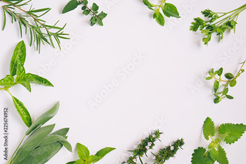 Stampa su Tela  Fresh spicy and medicinal herbs on white background