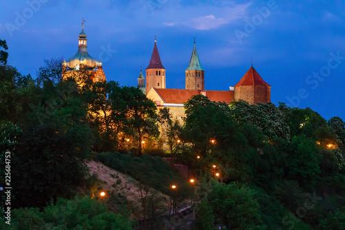 Płock- Katedra Fototapet